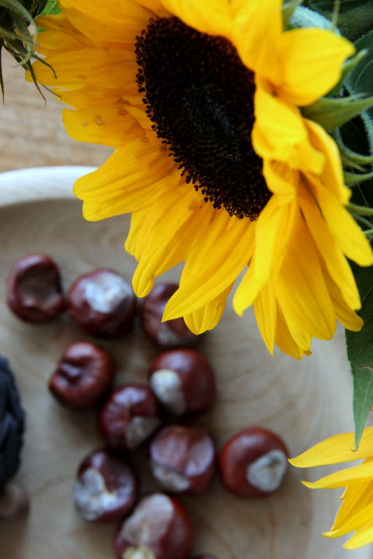 Sonnenblumen und Kastanien - Dekoration im Herbst
