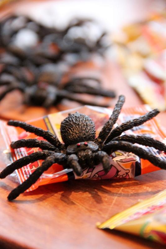 Spinnen für Grusel Kindergeburtstag