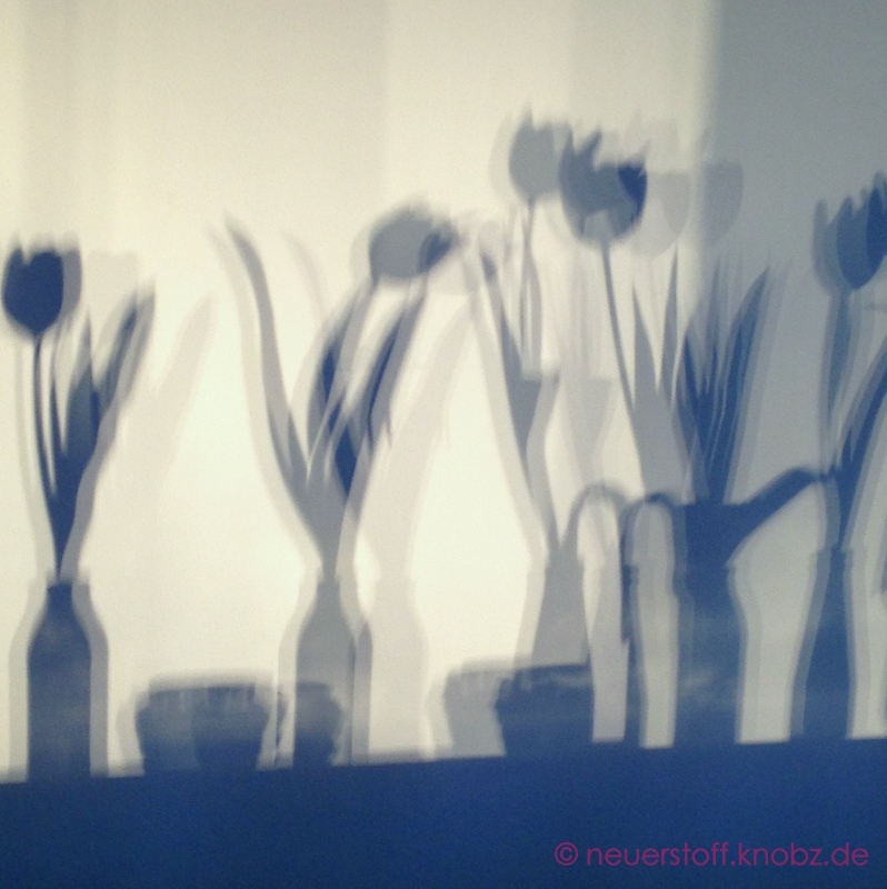 Schattenspiel - Tulpen im Frühling