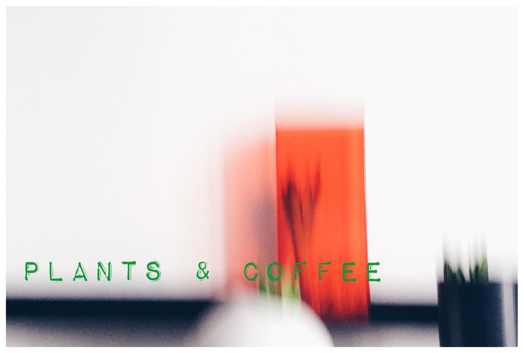 Plants & Coffee - Urbanjunglebloggers - knobz