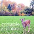 free printable Herbstblätter