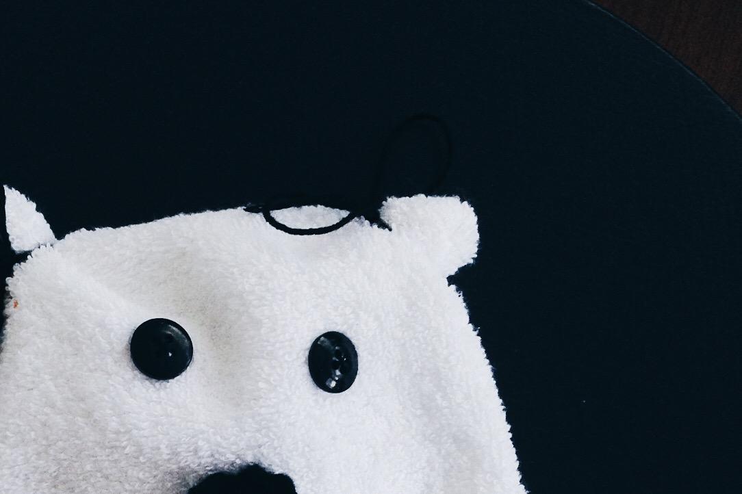 Waschlappen Tier Anleitung Eisbär